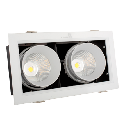 ĐÈN LED SPOTLIGHT (GL-2*10-V227)